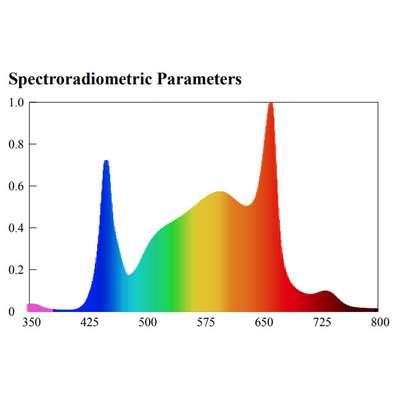 spectrum-sbu.440x400