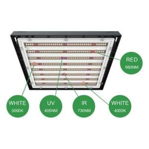 LED system 4Twenty